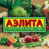 Овощи Аэлита - уже в каталоге!