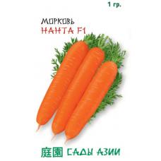 Морковь Нанта F1 | 1 г | Сады Азии