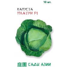 Капуста белокочанная Платун F1 | 10 шт | Сады Азии