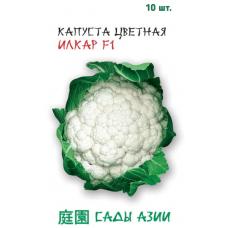 Капуста цветная Илкар F1 | 10 шт | Сады Азии
