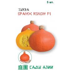 Тыква Оранж Колон F1 | 5 шт | Сады Азии