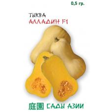 Тыква Алладин F1 | 5 шт | Сады Азии