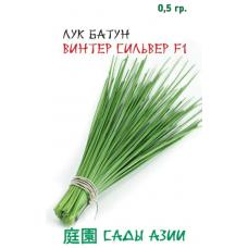 Лук батун Винтер Сильвер F1 | 0.5 г | Сады Азии