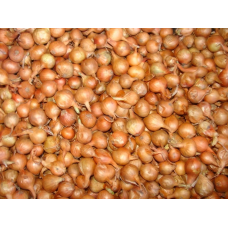 Лук севок Штутгартер ризен | 500 г | Разбор 14-21 мм