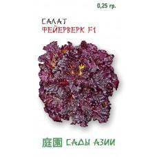 Салат кочанный Фейерверк F1 | 0.25 г | Сады Азии