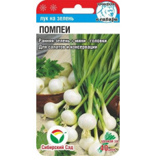 Лук репчатый Помпеи | 0.5 г | Сибирский сад