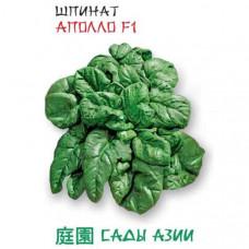 Шпинат Аполло F1 | 1 г | Сады Азии