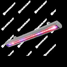 Фитолампа Fitoled 38 (ДСП 02-38-003) | 52 см