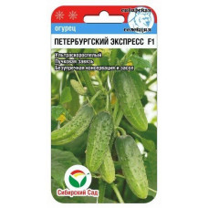 Огурец Петербургский экспресс F1   7 шт   Сибирский сад