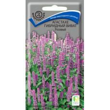 Агастахе Гибридный виват розовый | 10 шт | Поиск