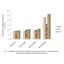 Биофунгициды от целлюлоразрушающих микроорганизмов в почве